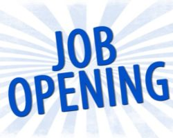 Library Assistant job opening